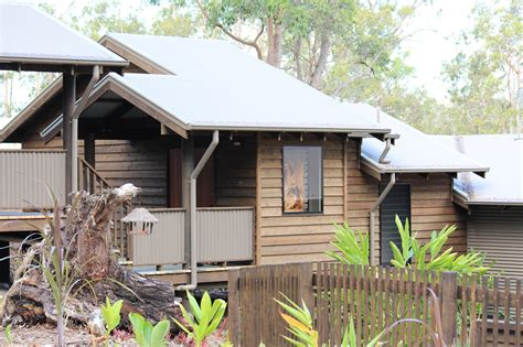 pole home designs gold coast pt pole homes modern timber homes