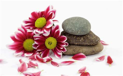 flower zen wallpaper chinese zen meditation pictures 1080p full hd widescreen