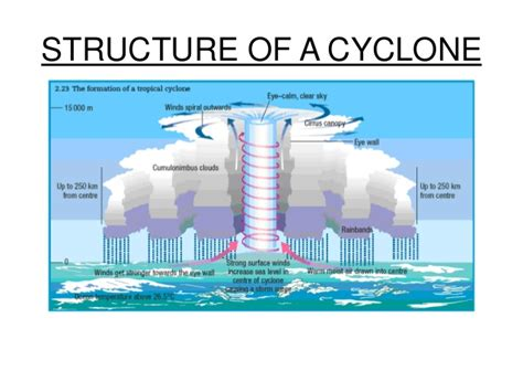 cyclone formation diagram the gallery for gt hurricane formation diagram