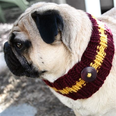 pug harry potter bulldogs gryffindor harry potter pug image 228770 on favim