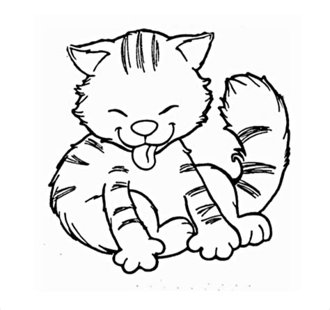 cat drawings template 13 free pdf documents format