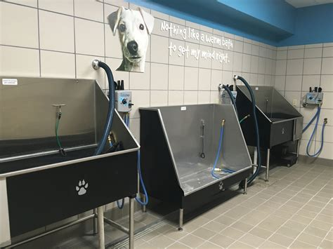 pet supplies plus wash grand opening of pet supplies plus tomorrow texan news service tarleton state