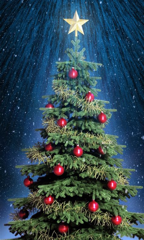 top 10 pictures of christmas trees for christmas day symbolic subversion of arya