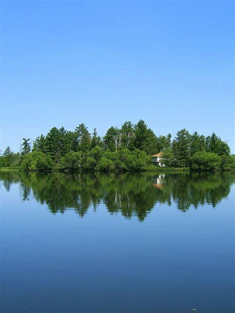 en un bosque muy im 225 genes de paisajes muy bellos im 225 genes chidas