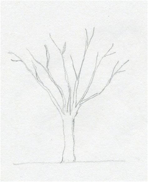 simple tree drawing draw a tree simply and easily