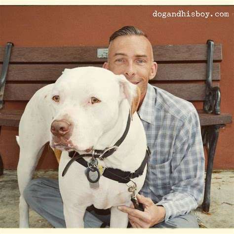 how to tell if your puppy is deaf keep your deaf safe petsafe 174 articles