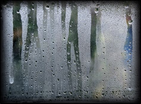 what causes condensation on inside of house windows windows problems when to fix and when to replace eieihome