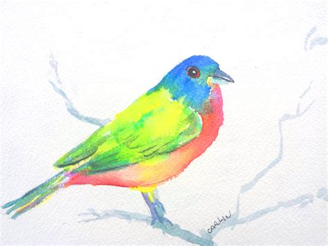 original watercolor painted bunting bird painting 5x7