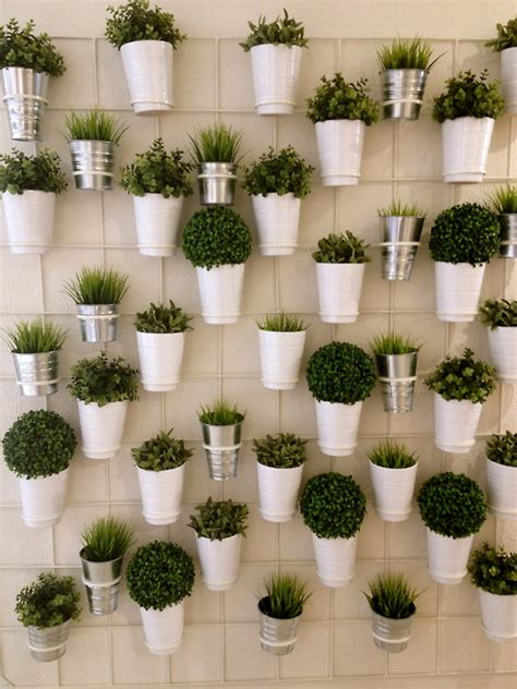 herbs on wall plant wall i want to do this with herbs the cordelle