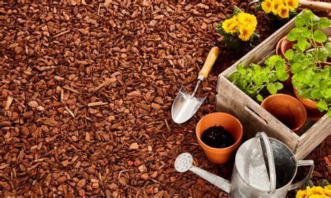 Type De Jardin by Paillage Naturel Pour Le Jardin Comment Le Choisir La