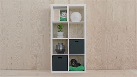 are dogs allowed in ikea pets cats dogs more ikea