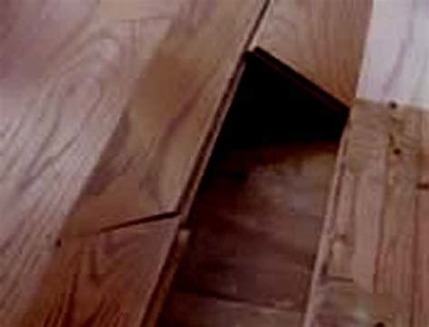 Hardwood Floor Buckling Wood Flooring Problems Moisture Related Floor Central