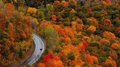 of minnesota colors minnesota fall colors scenic drives near brainerd cragun