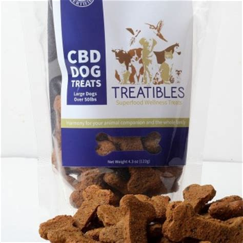 cbd treats cbd treats small pumpkin treats treat treatibles