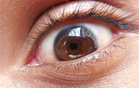 File The Human Eye Jpg Eyeball Pics