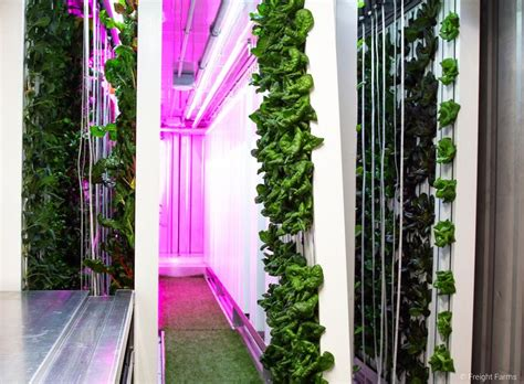 innovative hydroponic system  sale   shipping
