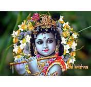 Cute Krishna HD Wallpapers