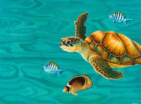 Hawaiian Home Decor by Kauila Sea Turtle Painting By Emily Brantley