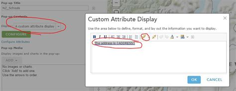 Enter Search Or Web Address How To Add Link In Arcgis Web Map Popup To Or Driving Directions