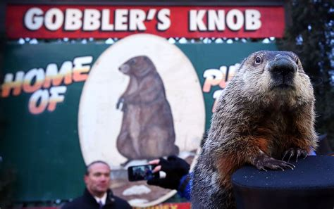 the groundhog day groundhog day in punxsutawney