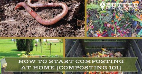organic compost at home composting 101 guide