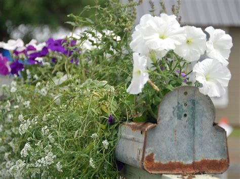 container gardening diy 13 and upcycled container gardens diy