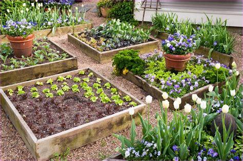 raised vegetable garden kits raised vegetable garden beds kits home design ideas