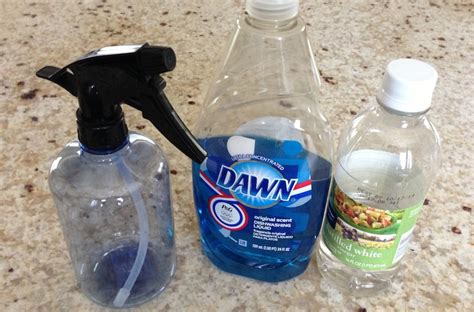 White Vinegar Cleaning Shower Glass by Diy How To Make Glass Cleaner Going Evergreen