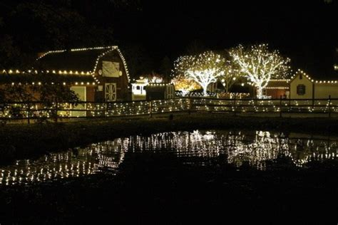 lehigh valley zoo light allentown lights decoratingspecial com