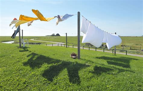 laundry liner clothes line
