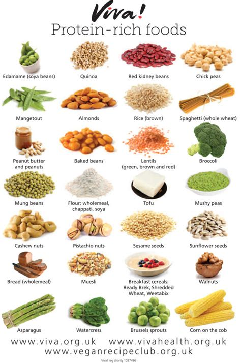 protein rich vegetables protein rich foods wallchart viva health