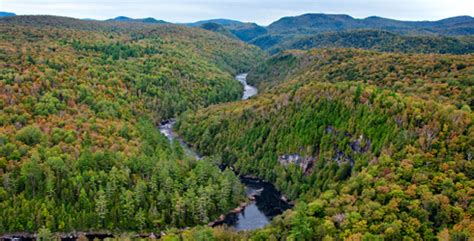 new york state board of trustees the nature conservancy