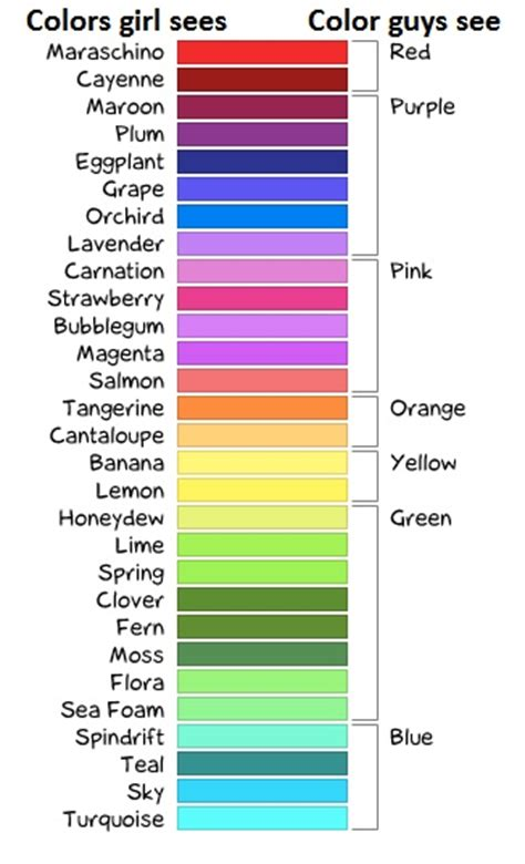 punny color name 28 punny color name color names if you re a girl
