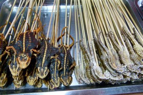 Sho Kuda Ukuran Kecil 7 makanan paling ekstrim yang sangat spesial dari negara