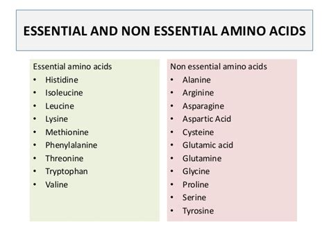 worth it how l tyrosine non essential amino acid is changing the world and you probably donã t it books ads 3014 l5