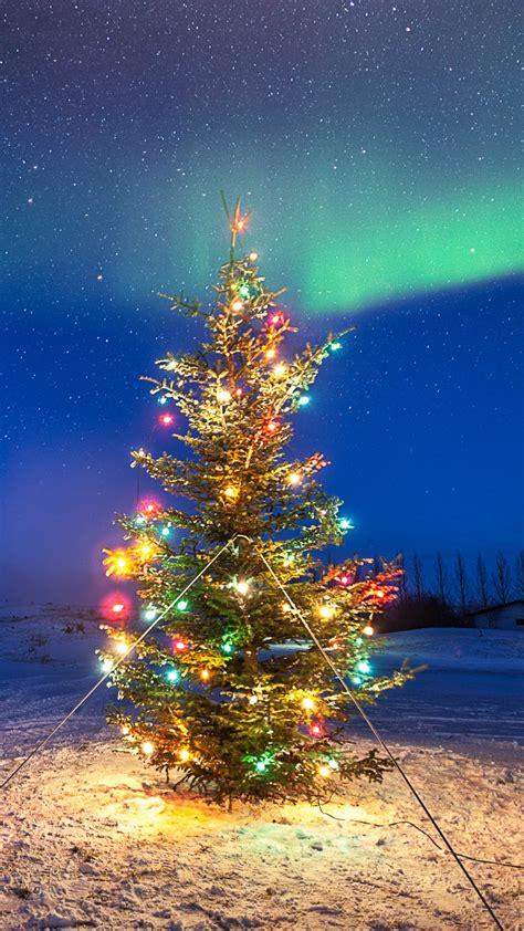 wallpaper christmas for mobile christmas tree in ground mobile wallpaper hd wallpaper