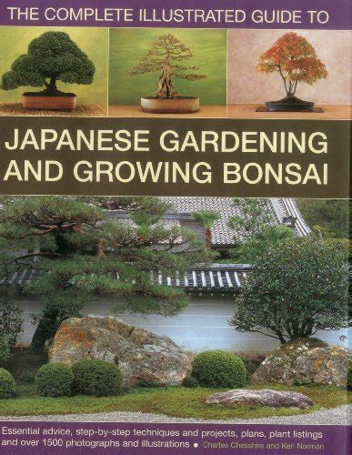 bonsai the complete guide b000iobreq bonsai and the japanese garden applying the ancient bonsai art and japanese landscaping to
