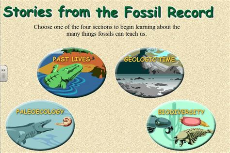 section 17 1 the fossil record pangburn s posts the important thing in science is not