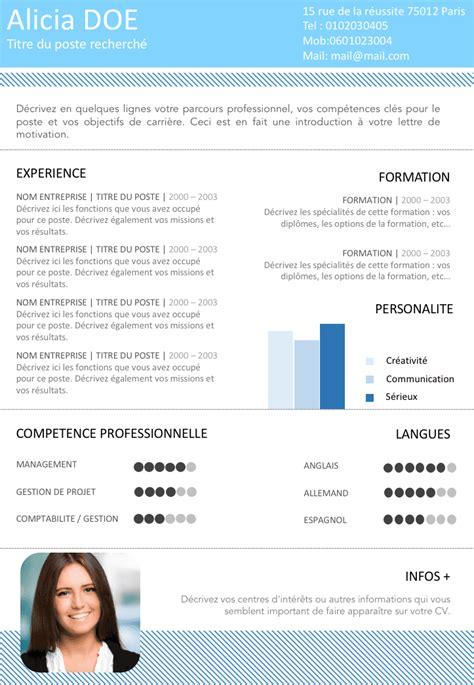 Type De Cv Professionnel by Exemple De Cv Cadre Gratuit 224 T 233 L 233 Charger