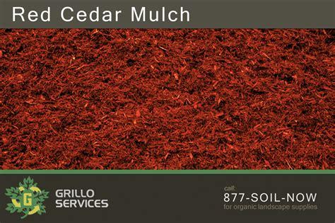 Mulch On Sale For A Choosing Between Pine Hemlock Cedar Bark Colored Mulch