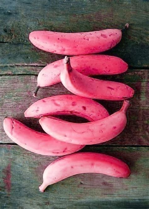 pink food pink banana healthy food healthy awesome classic and design