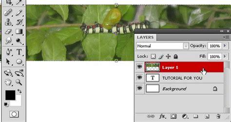 cara mewarnai tulisan dengan gambar di photoshop