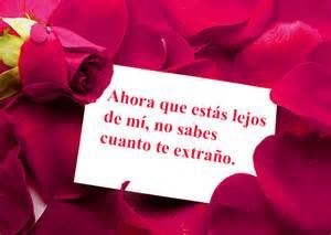 imagenes de rosas tristes con frases imagen de amor con una tarjeta con frase hermosa