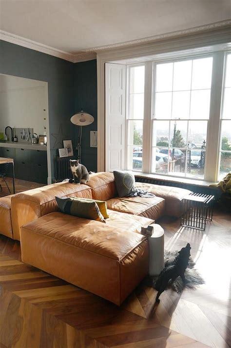 dog  wolf  living room grey living room
