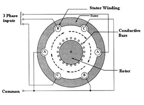 3 phase induction motor vs dc motor 22 best images about electric motors on engineering what would and rc cars