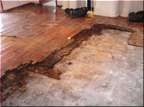 Hardwood Floating Floor Hardwood Floors Hardwood Flooring And Floating Wood Floors