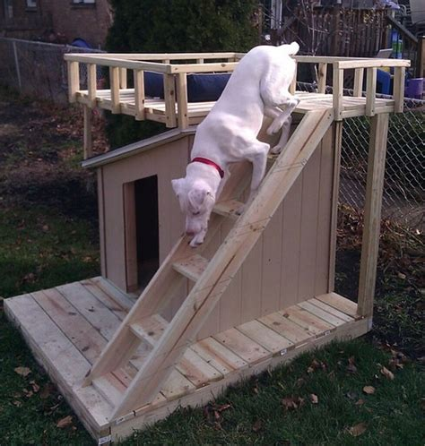 dog house with a view every dog deserves a viewing deck dog house viewing deck