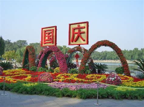 National Mba Supervisory Committee China by Airlines Served 12 95 Million Passengers The