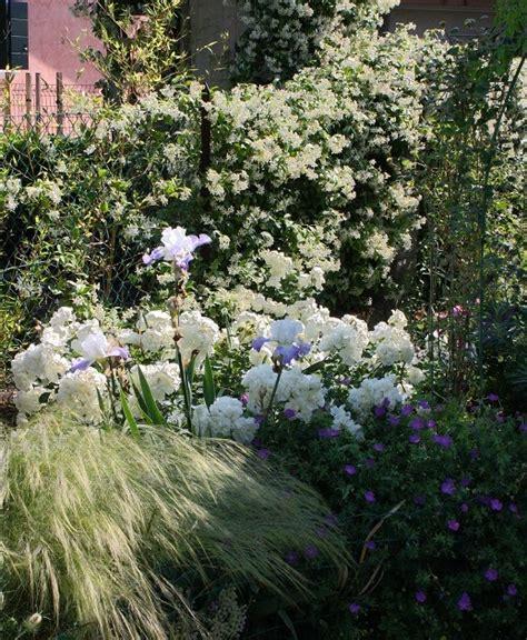 il piccolo giardino di l il piccolo giardino di l un angolo tutto in bianco