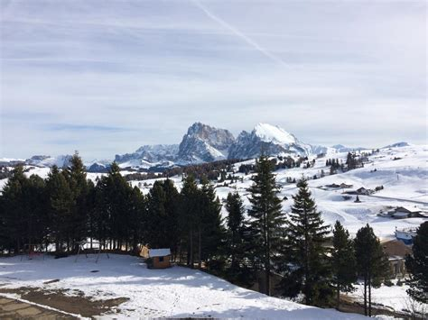 appartamenti alpi di siusi appartamento alpe di siusi including reviews booking